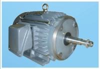 Water-pump Motor