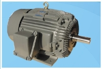 Explosion-proof Electric Motor