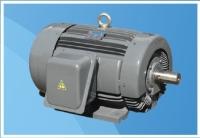 High-efficiency Motor