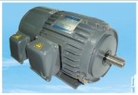 Inverter-duty Motor