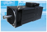 Induction Servomotor