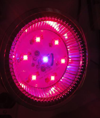 E27 PAR30 12W LED Grow Light Bulb
