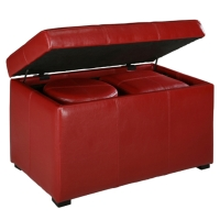 Storage with 2 small Ottoman