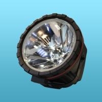 HID 固定式戶外照明燈
