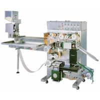Fully-automatic PTP-blister Packaging Machine