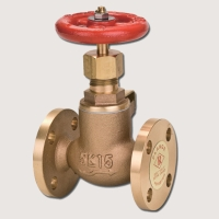 Globe & Angle Valves for Marine Applications