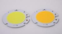 17W Round Shape COB LED Module