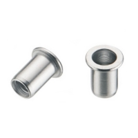 Flat Head Rivet Nuts