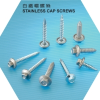 Stainless Cap Screws