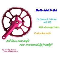 Belt-100T-G4