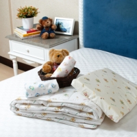 Children Pillow + Pillow Cover + Quilt