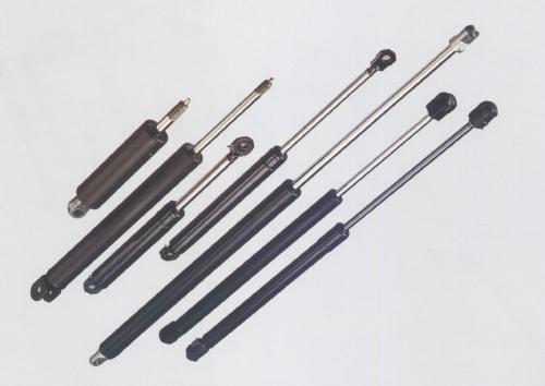 Tailgate Gas Strut