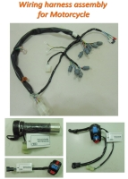 Automotive Main Harness