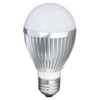 LED A60 Bulb