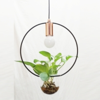 Cens.com pendant lamp CHARMING HOME DECOR CORP.