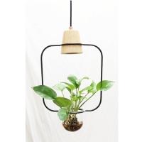 CENS.com pendant lamp
