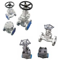 API 600 Cast & API 602 Forged Steel Gate, Globe & Check Valves