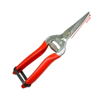 """7.5"""" Curved Fruit Shears"""