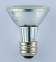 PAR20 Halogen Lamp