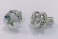 Screws & Washers Assembled (SEMs Screws)