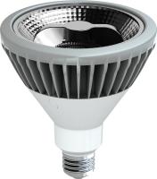 LED Reflector PAR38