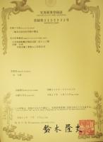 Conversion kit Patent
