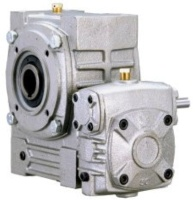 Double Worm Gear Reducer -