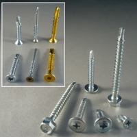 Cens.com Self-drilling Screw (TEK point) PROCAR INTERNATIONAL CO., LTD.