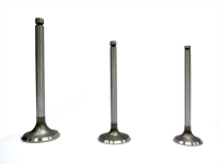 Cens.com Engine Valve AEPS TRADING CO., LTD.