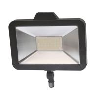 LED 泛光灯