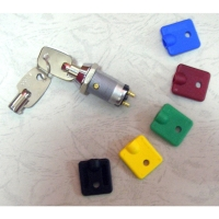 Switch Lock (203)
