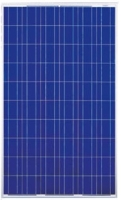 Cens.com Solar Panel -poly DJ SOLAR CO., LTD.