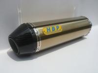 Golden titanium exhaust (300L) + carbon-fiber flanged end