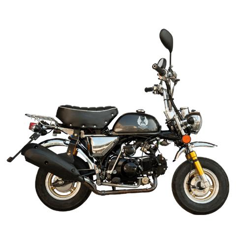 Motorbike (MONKEY)