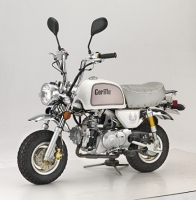 Motorbike (GORILLA)