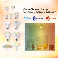 BLTC APP Color Changing Series(IOT)