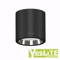 LED Ceiling Mount
