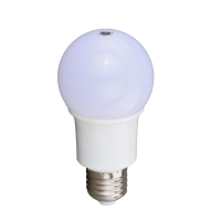 Sensor Light Bulb