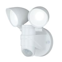 Dual-Level Brightness Outdoor Security Light