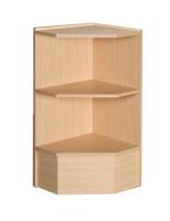 Pentagon corner case with wood shelves