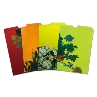 4 Different Colors A4 L Folder