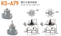 Double Spindle Angle Head