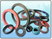Automotive seals series