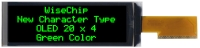 "Monochrome Displays (Character Type) 2.89"""
