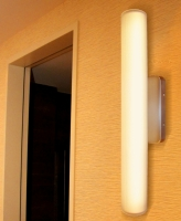 LED Vanity Light-Brilliant