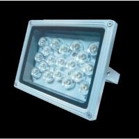 LED Flood Lamp