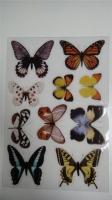 G1102B butterflies