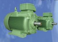 WRS IE2/IE3 High-efficiency motor