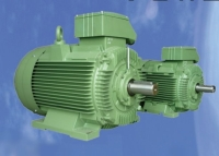 WRS IE2/IE3 High-efficiency motor
