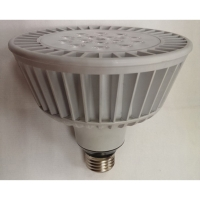 20W LED PAR38 投射灯